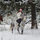 Новинка! Эксклюзивный тур «Архыз» на 8 марта 2019г. с кормлением зубров на лошадях.
