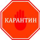 Добрый день! Мы находимся на карантине. Если у Вас горящий вопрос или заявление, то пишите нам на электронную почту continental-bp@mail.ru